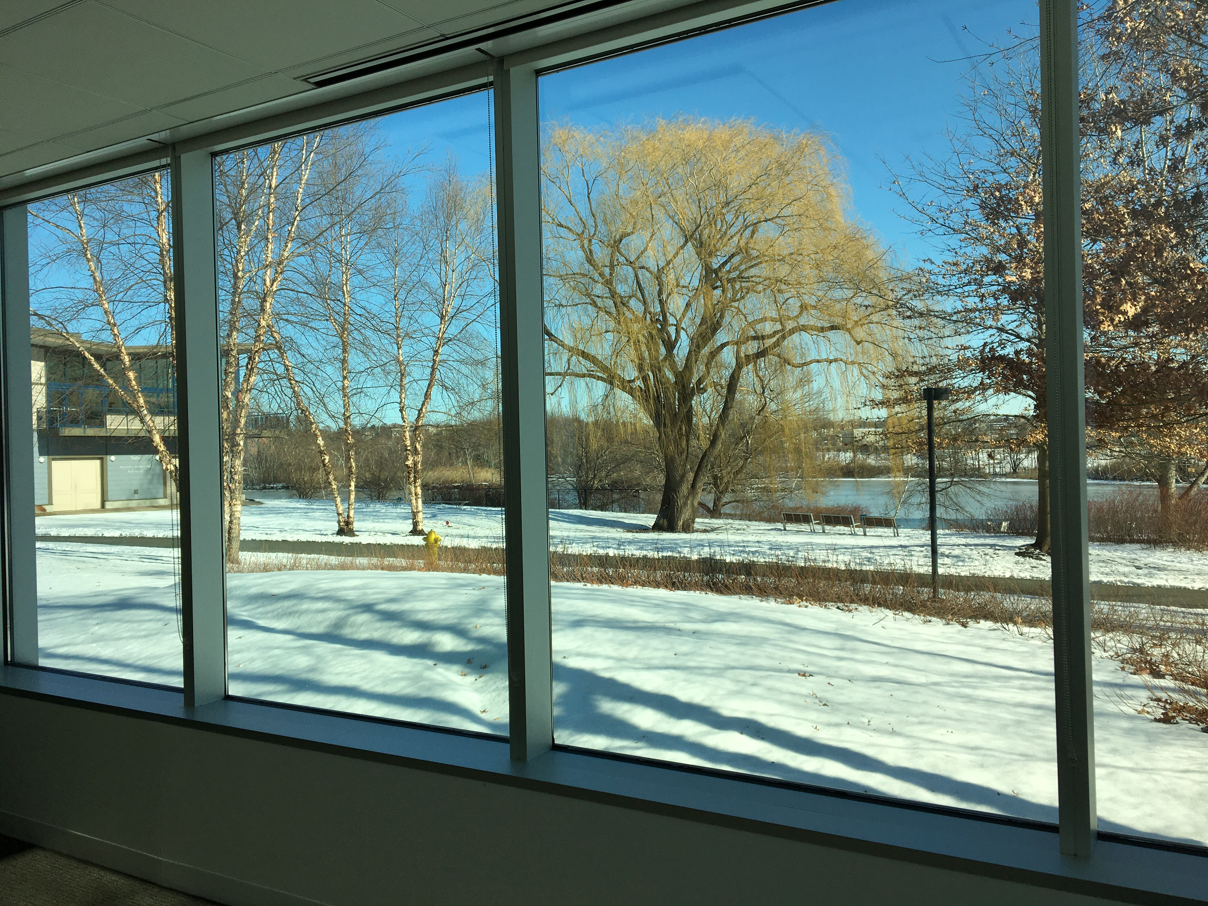 Great Lawn Room View in Winter